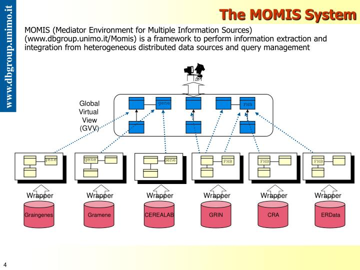 The MOMIS System
