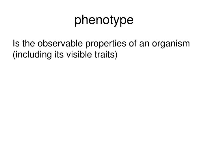 phenotype
