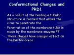 conformational changes and prd1
