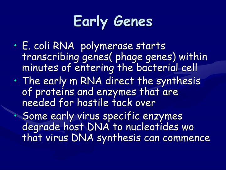 Early Genes