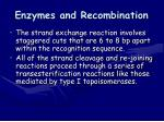 enzymes and recombination1