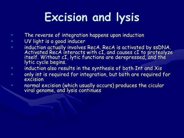 Excision and lysis
