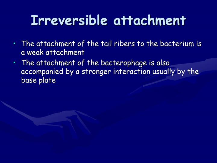 Irreversible attachment
