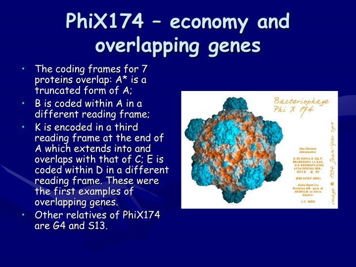 PhiX174 – economy and overlapping genes