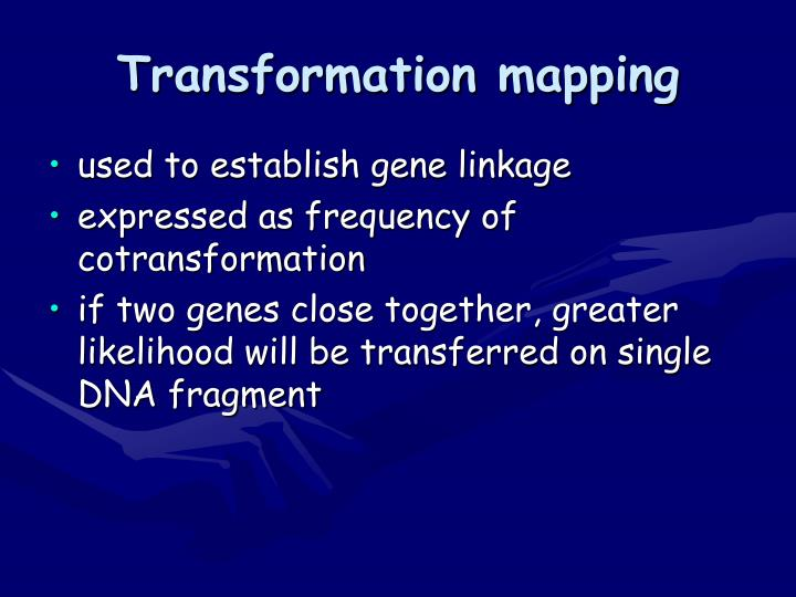 Transformation mapping