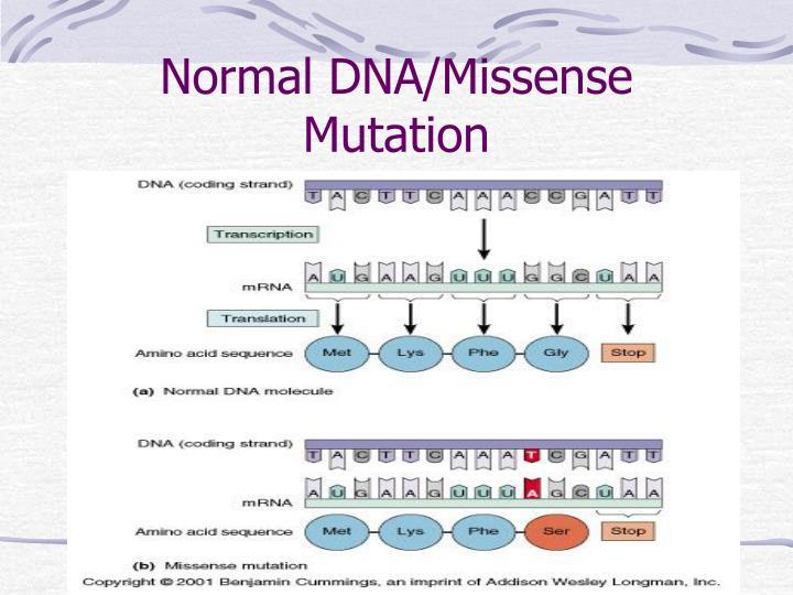 Normal DNA/Missense Mutation