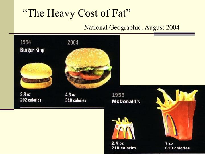 """""""The Heavy Cost of Fat"""""""