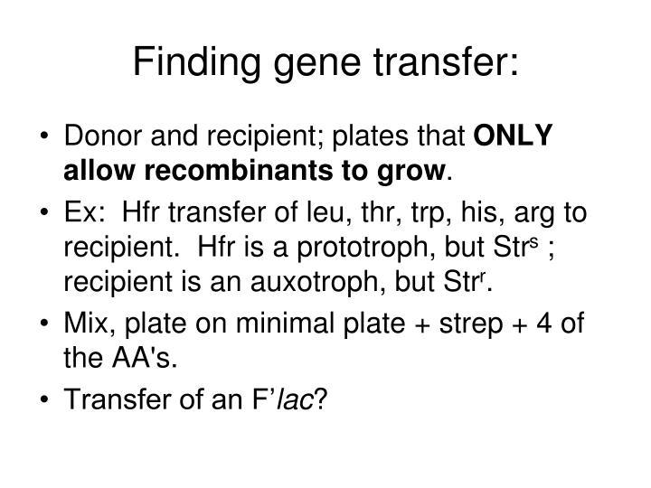 Finding gene transfer: