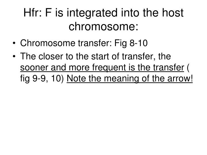 Hfr: F is integrated into the host chromosome: