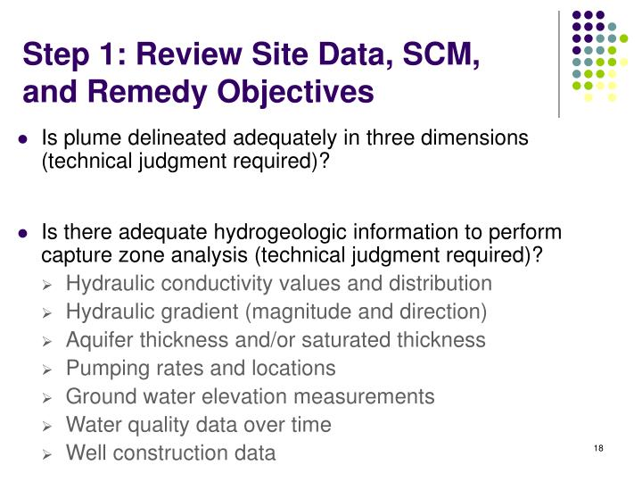 Step 1: Review Site Data, SCM, and Remedy Objectives