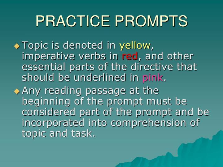 PRACTICE PROMPTS