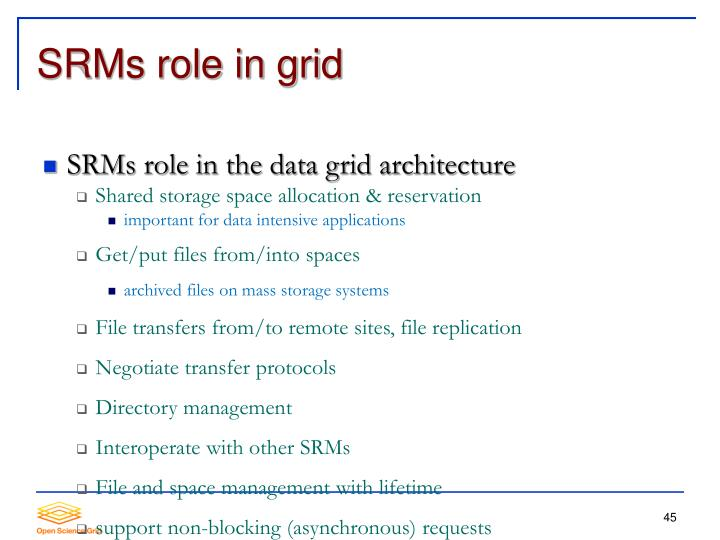 SRMs role in the data grid architecture