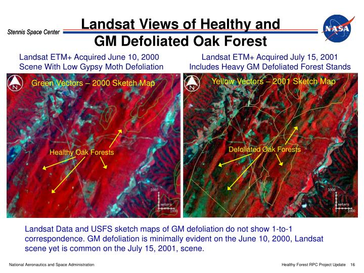 Landsat ETM+ Acquired June 10, 2000