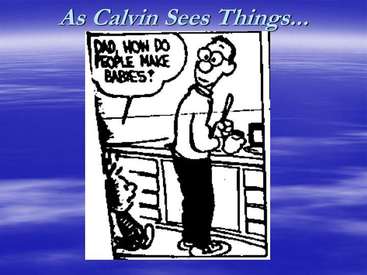 As Calvin Sees Things...