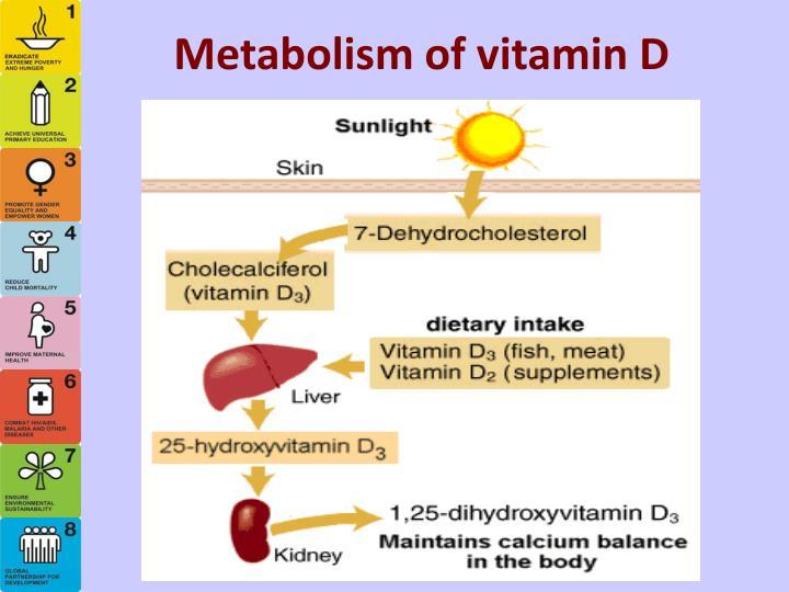 Metabolism of vitamin D
