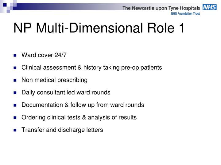 NP Multi-Dimensional Role 1