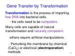 gene transfer by transformation