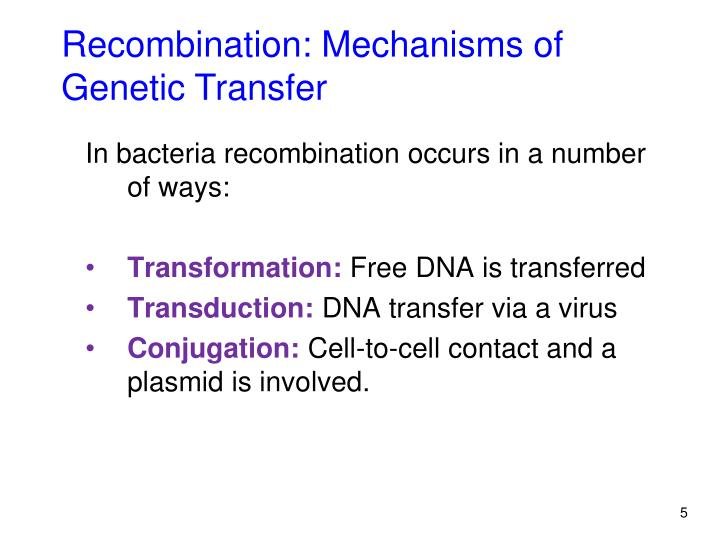 Recombination: Mechanisms of Genetic Transfer