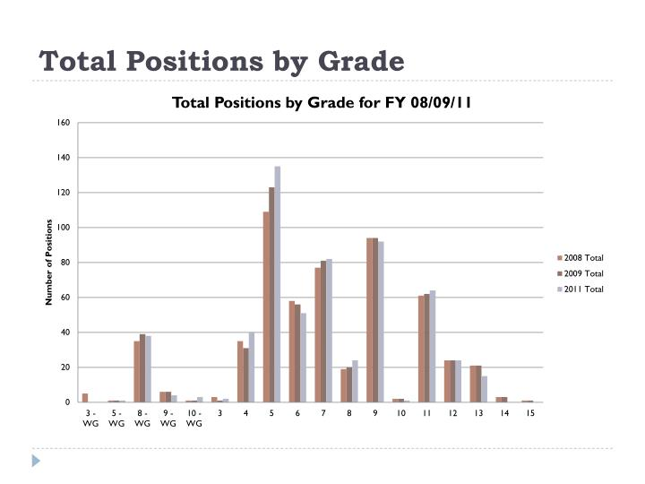 Total Positions by Grade