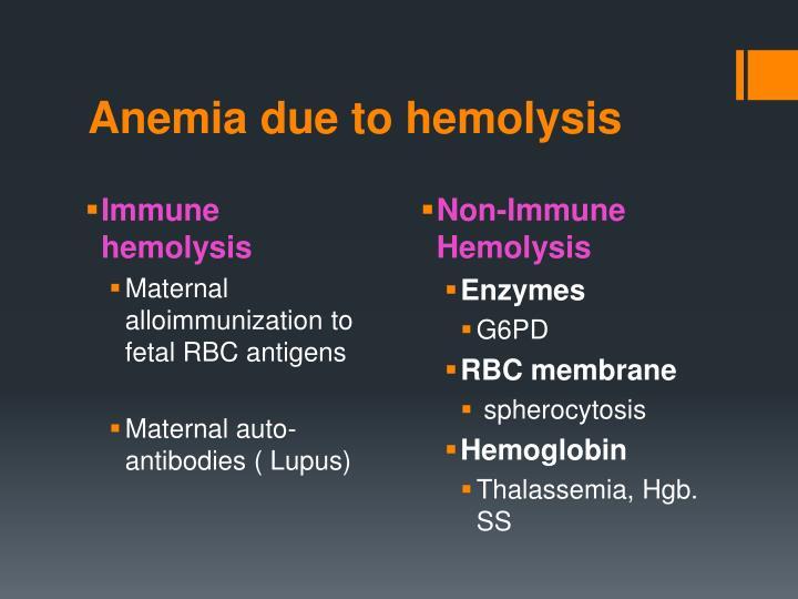 Anemia due to hemolysis