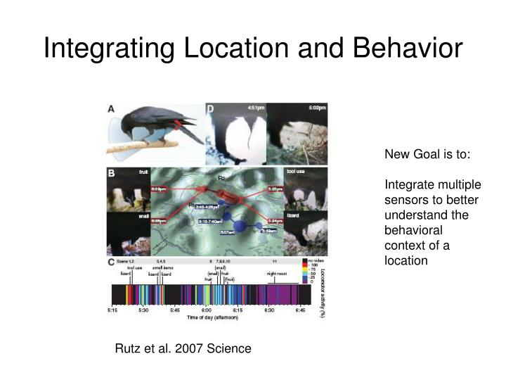 Integrating Location and Behavior