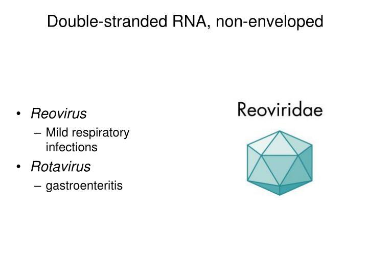 Double-stranded RNA, non-enveloped