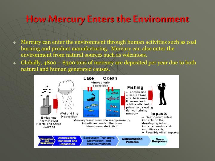 How Mercury Enters the Environment