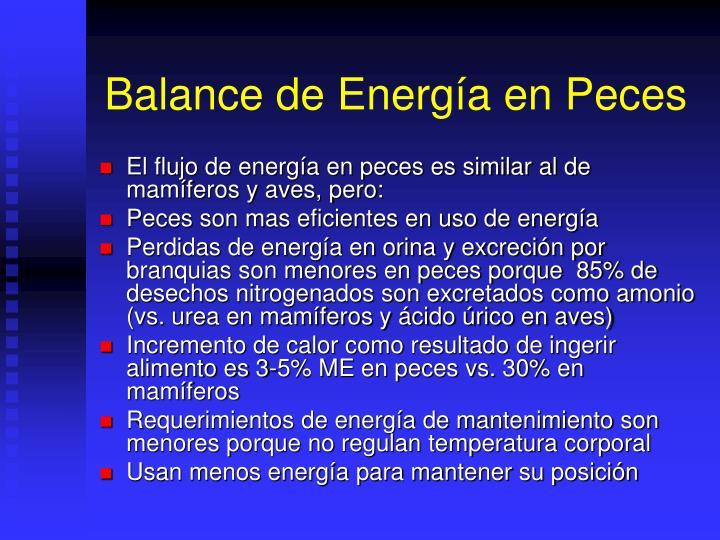 Balance de Energía en Peces
