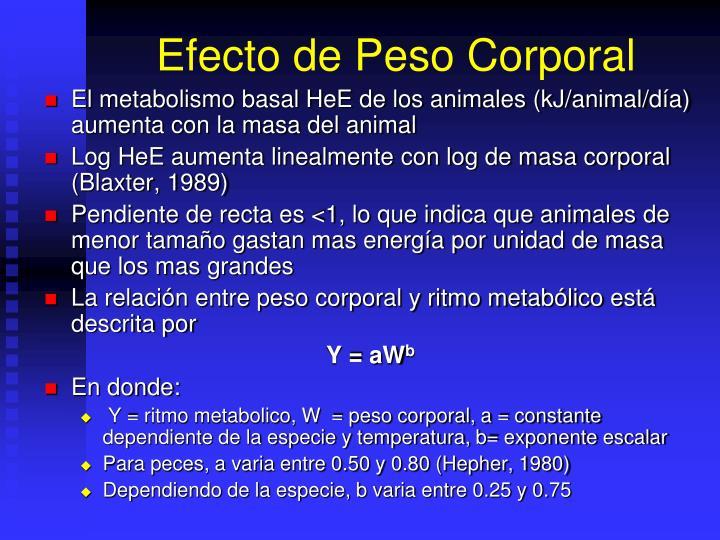 Efecto de Peso Corporal