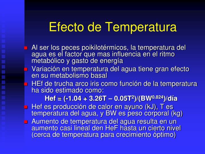 Efecto de Temperatura