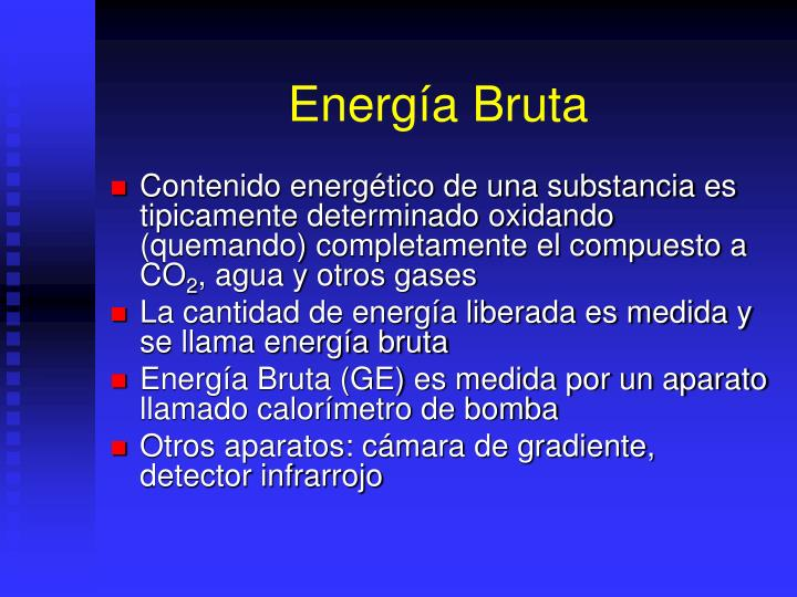 Energía Bruta