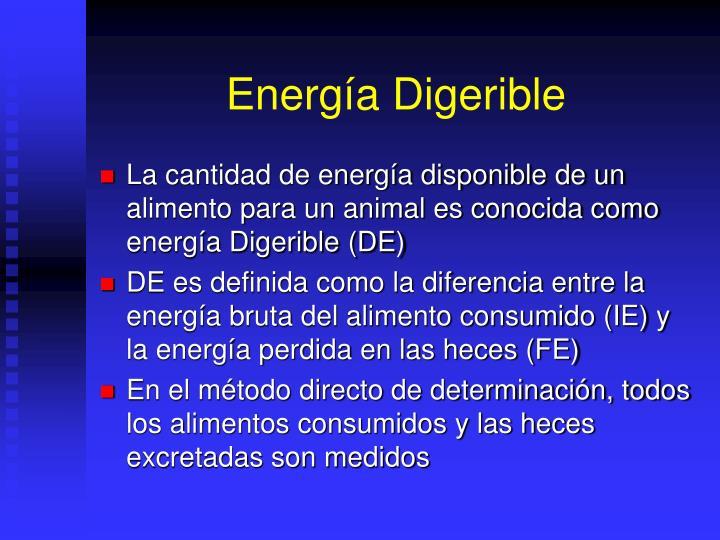 Energía Digerible