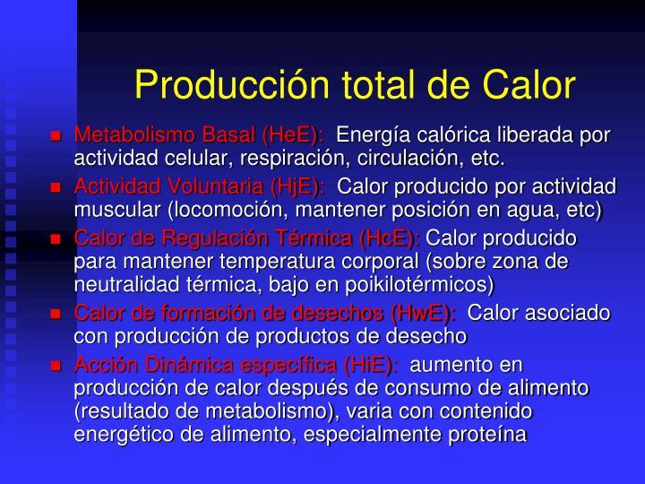 Producción total de Calor