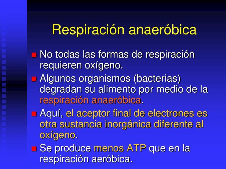 Respiración anaeróbica