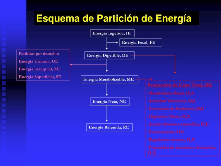 Esquema de Partición de Energía