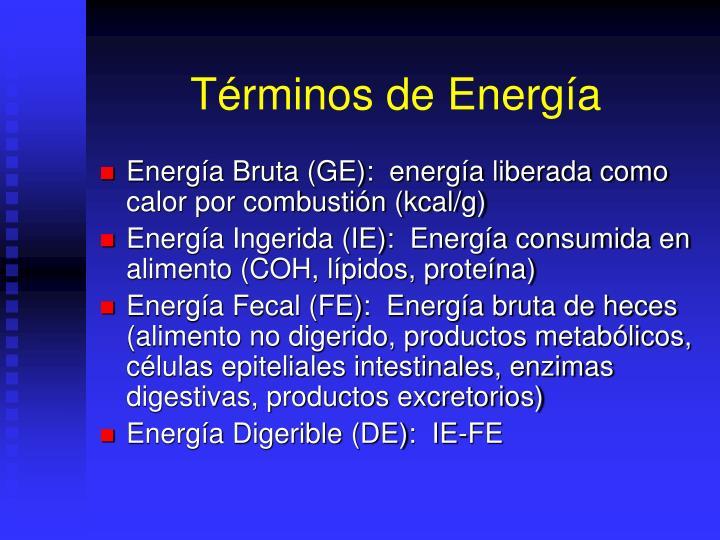 Términos de Energía