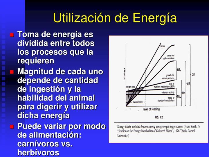 Utilización de Energía