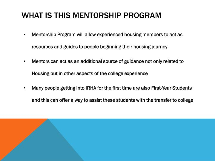 What is this mentorship program