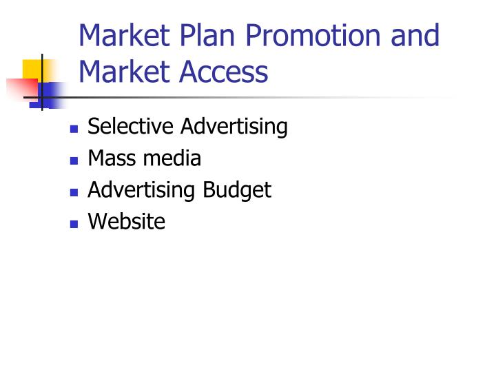 Market Plan Promotion and Market Access