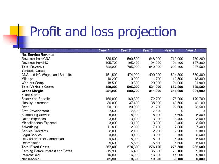 Profit and loss projection
