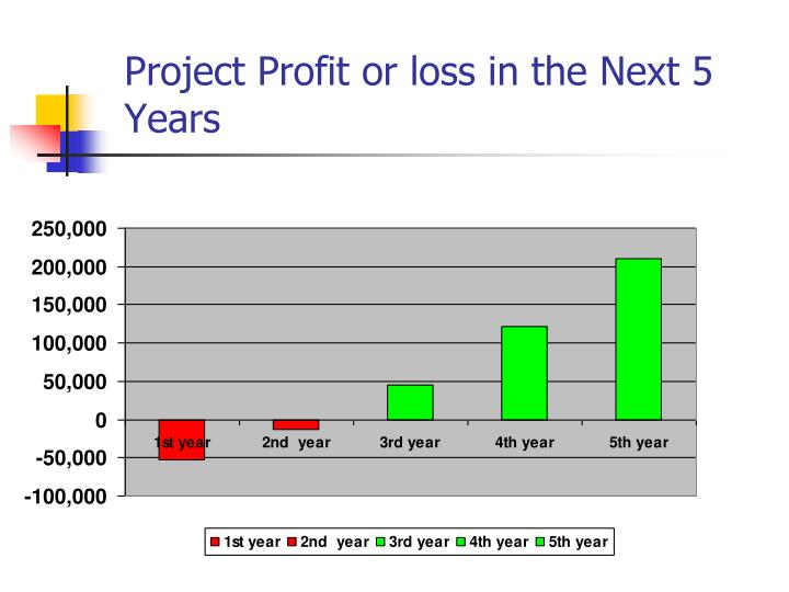 Project Profit or loss in the Next 5 Years