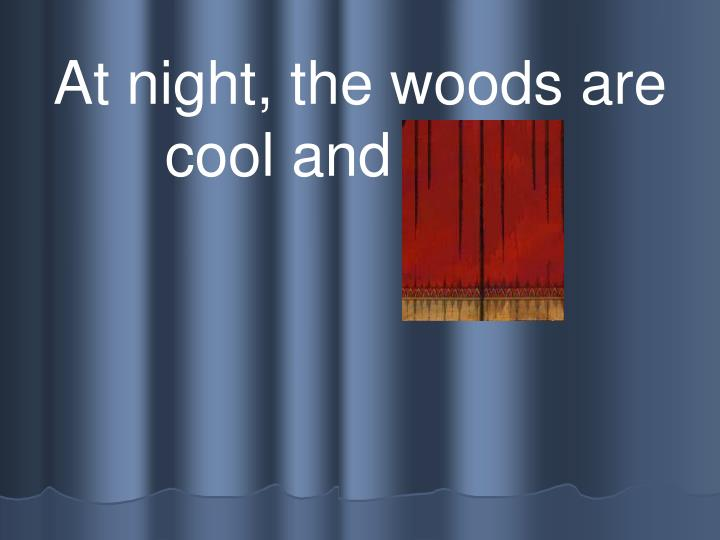 At night, the woods are cool and quiet.