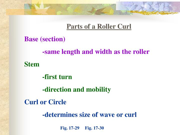 Parts of a Roller Curl