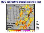 ruc convective precipitation forecast
