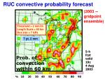 ruc convective probability forecast