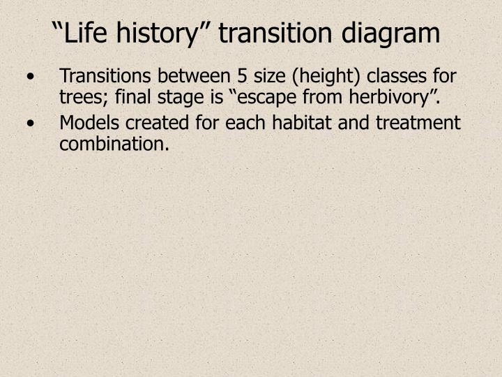 """Life history"" transition diagram"