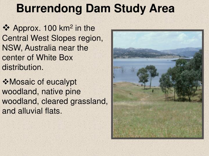 Burrendong Dam Study Area
