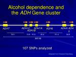 alcohol dependence and the adh gene cluster