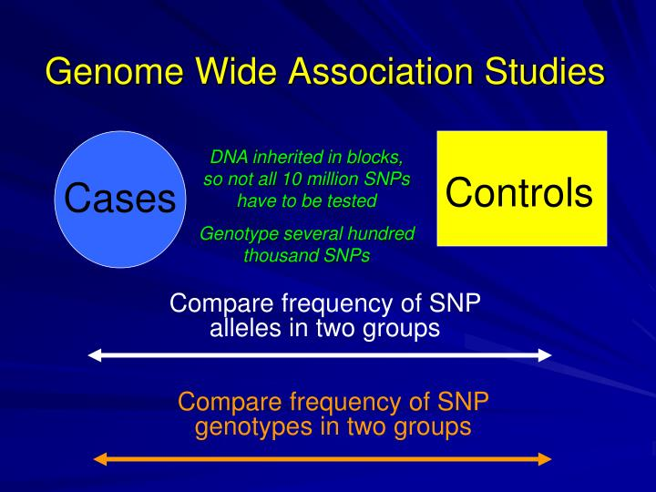Genome Wide Association Studies