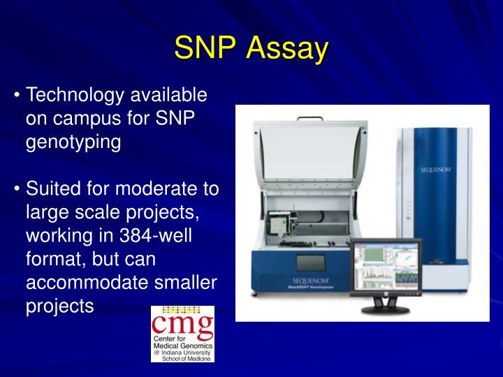 SNP Assay